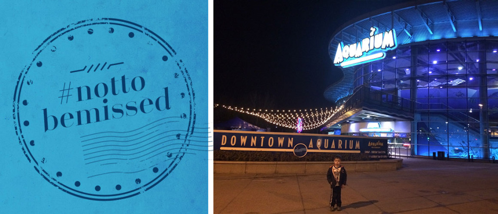 Top #nottobemissed attractions at the Downtown Aquarium Denver with Kids