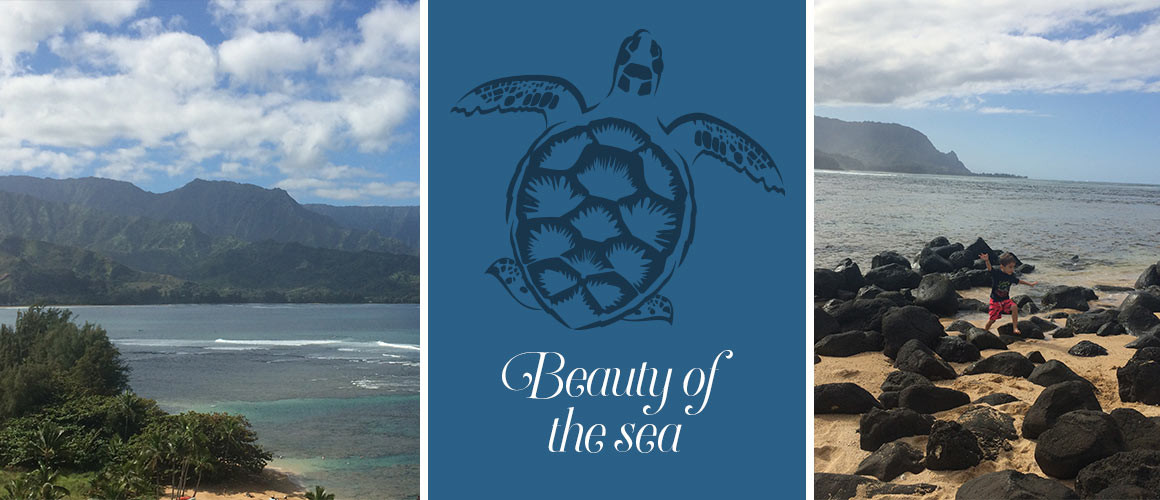 Beach_StRegis_Hawaii