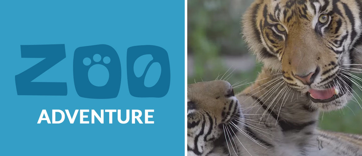 ZooAdventure