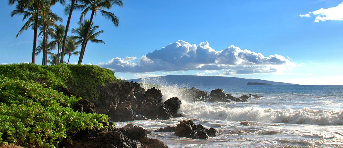 Beach_Rocky