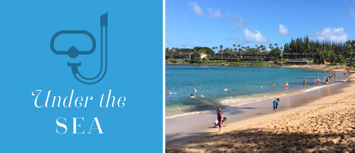 6 Great Family Beaches on Maui Perfect for Kids| Maui family vacation | Maui with kids | Hawaiian family vacation | Best Beaches on Maui| Best beaches Hawaii