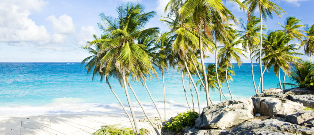4 Reasons to Visit Barbados This Year