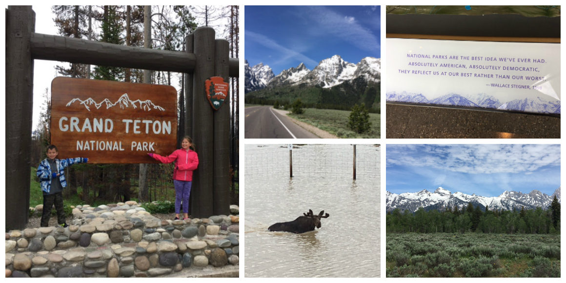 Showing The Kids How The West Was Won: A Wild Western Family Road Trip - Western Family Road Trip Guide to National Parks including Grand Teton, Yellowstone, and Rocky Mountain National Park. This post has everything you need to plan a road trip with the kids! Itinerary, what to see, what to do, where to stay, and where to eat! ****************** Wild West Road Trip   Western Road Trip   National Parks with kids   Wild West Adventure   Wanderlust   Western US Road Trip   Grand Teton with Kids   Yellowstone with Kids   Rocky Mountain National Park with Kids   Cody Wyoming with kids  Cody Rodeo   Ft. Collins Colorado with kids   Buffalo Bill Center of the West   Cody Hotel   Cody Nite Rodeo   Chief Joseph Highway   Wilderness Connection   Gardiner Montana   Continental Divide   Old Faithful   United States Serengeti Plain   Buffalo   Jackson Hole Wyoming with kids   National Parks road trip   National Parks with kids