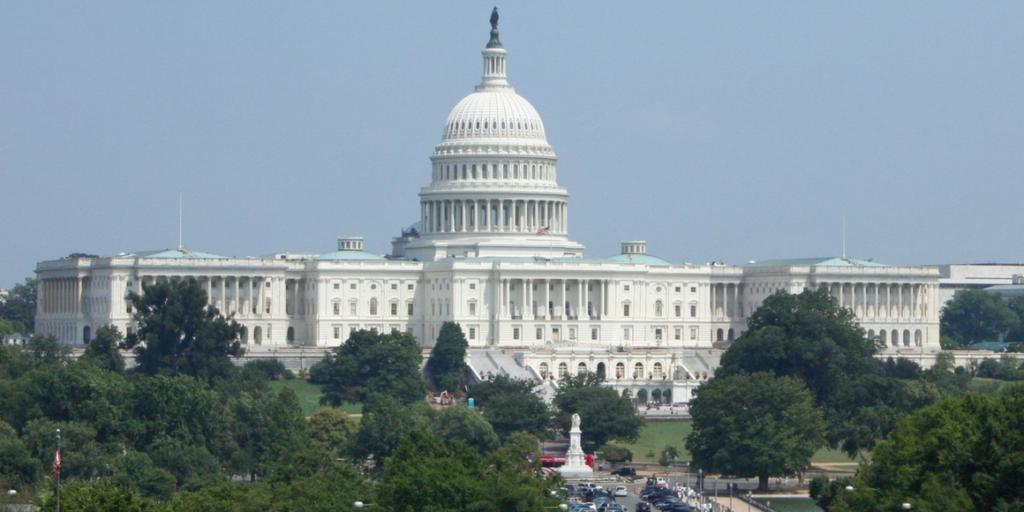 Top 5 Favorite Activities in Washington D.C. for Little Kids