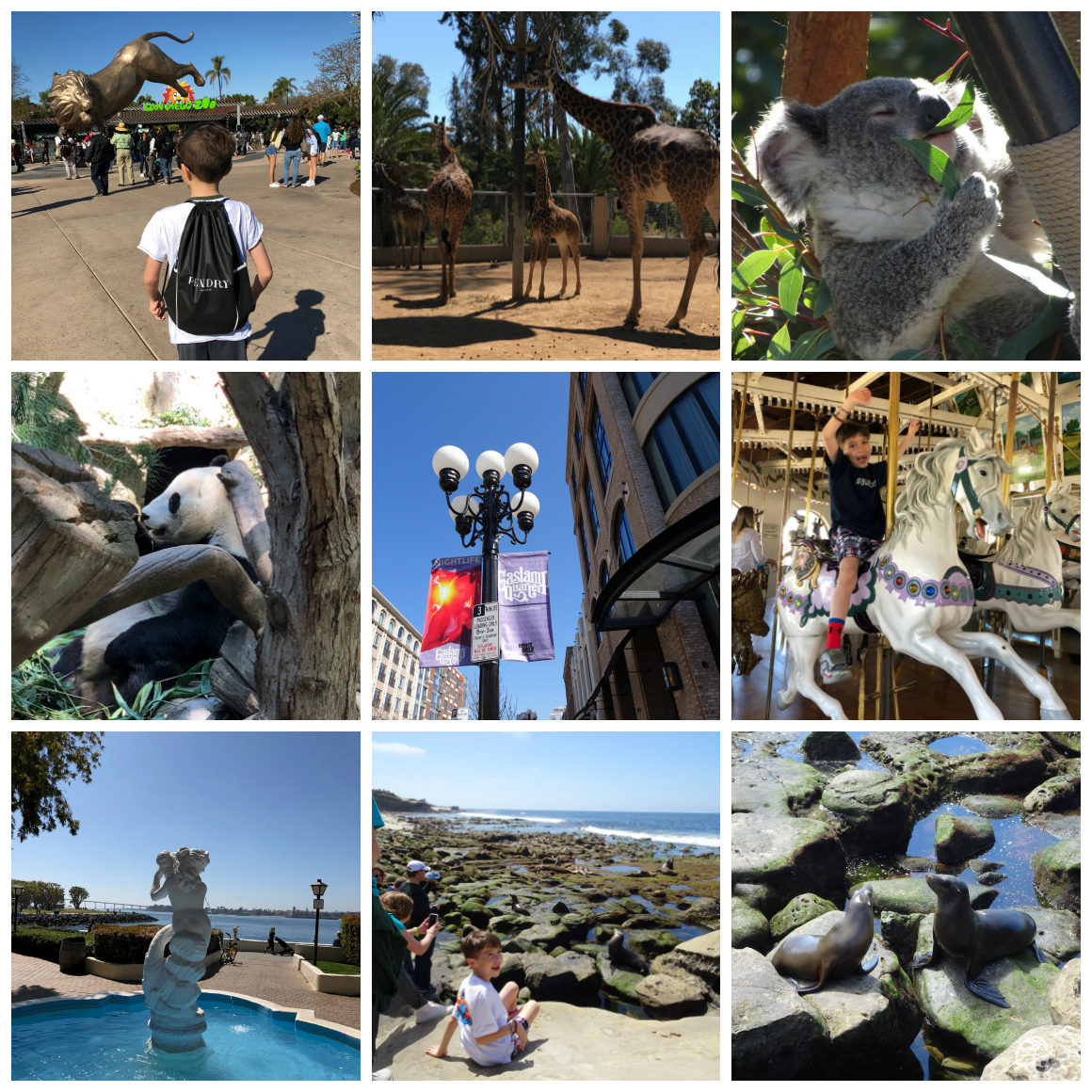 The Best Stuff to see and do in San Diego with kids