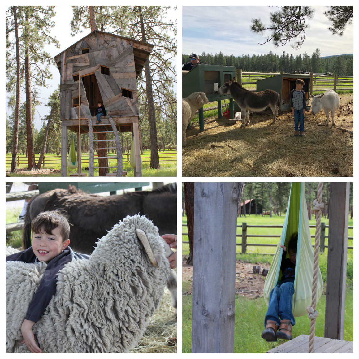 Montana Ranch for kids - Well Traveled Kids