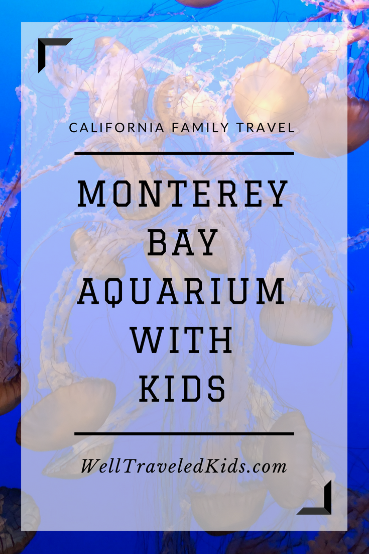 Tips for visiting Monterey Bay Aquarium with kids - Well Traveled Kids