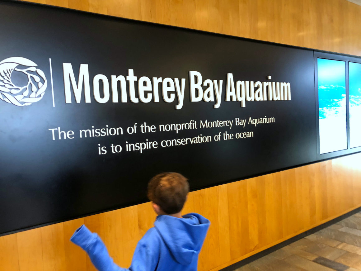 teaching kids conservation of the ocean at Monterey Bay Aquarium - Well Traveled Kids