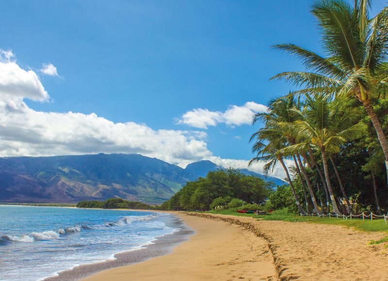 Best of Maui for kids