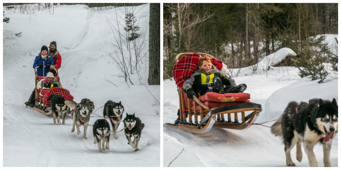 Dogsledding in Mont Tremblant with kids