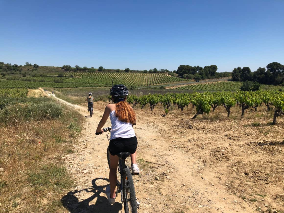 bike riding through french vineyards with kids