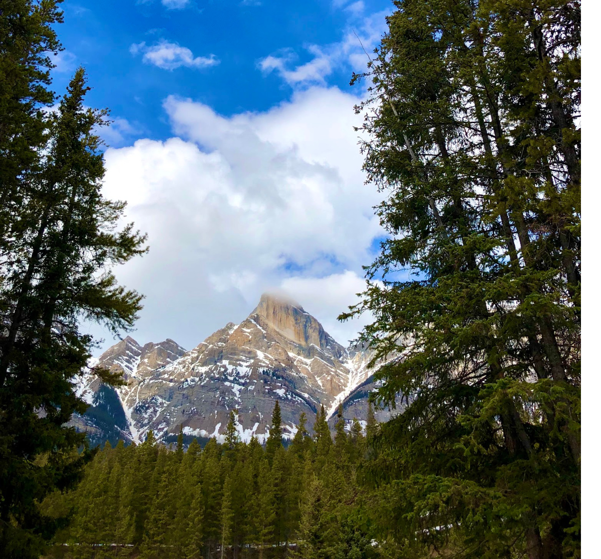 Ultimate Spring Break in Banff National Park with Kids