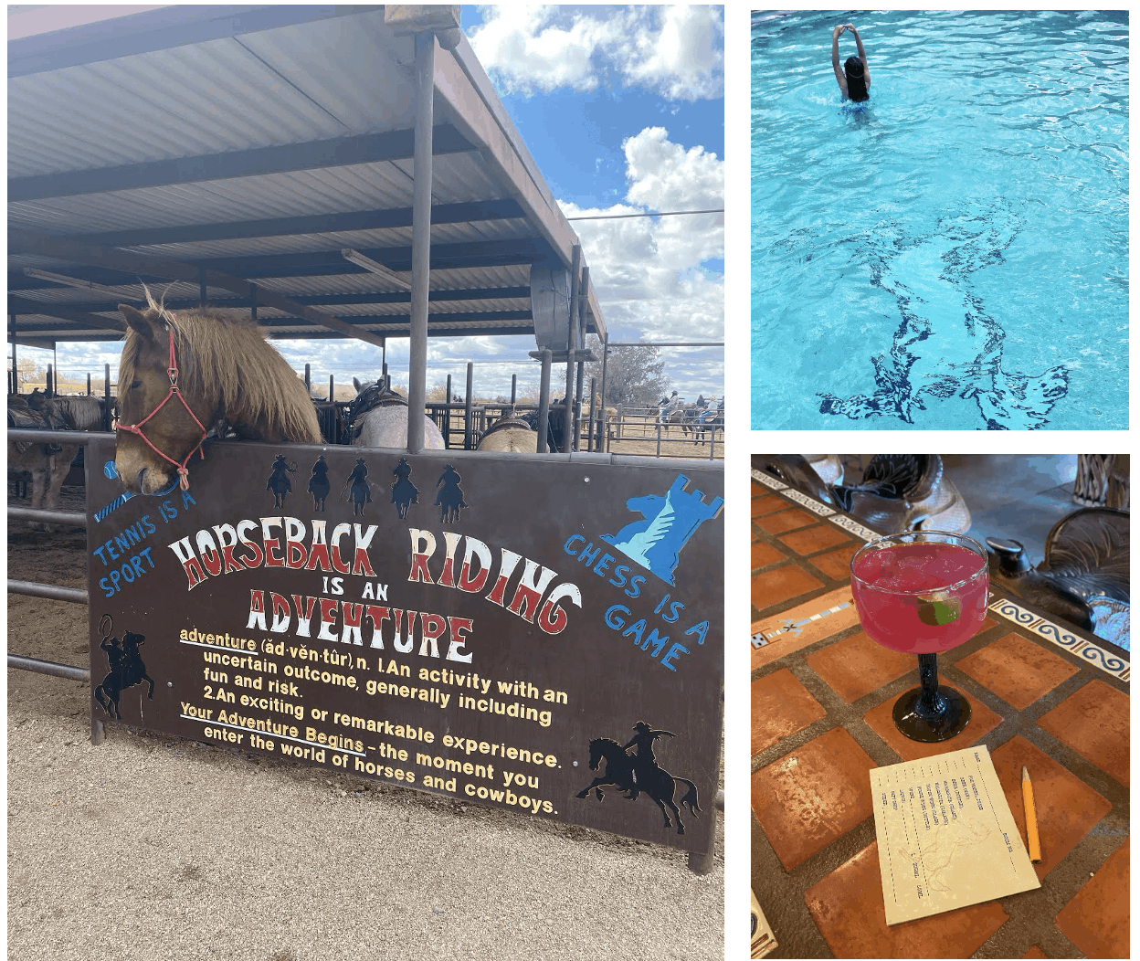 Review of White Stallion Ranch